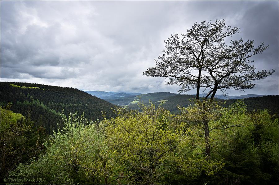 Ausblick vom Alpenhaus