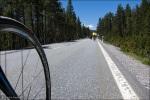 Lange Geraden wie hier prägen die Abfahrt des Ofenpasses durch den Schweizer Nationalpark