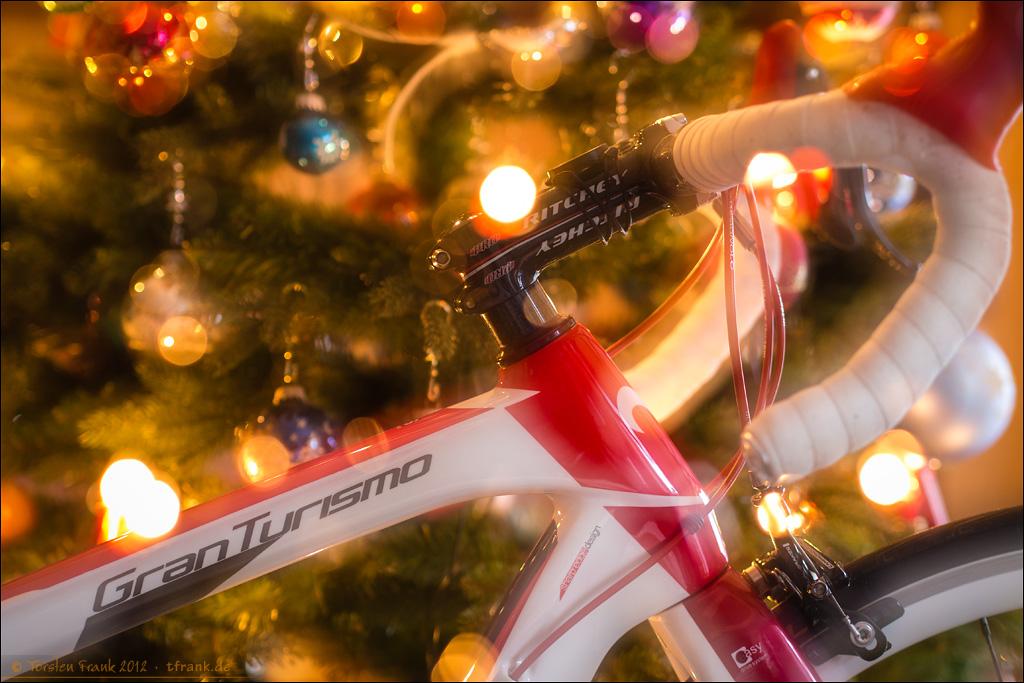Wilier Triestina GranTurismo vor Weihnachtsbaum