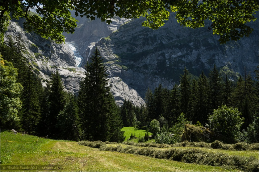 Heu machen zu Fuße des Oberen Grindelwaldgletschers.