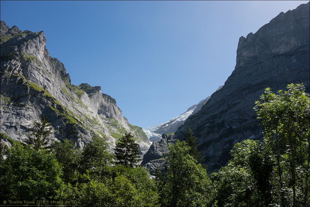 Der Obere Grindelwaldgletscher