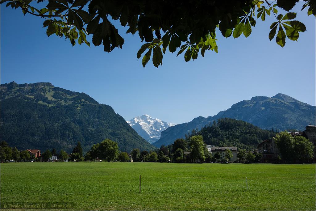 Jungfraublick von der Höhematte in Interlaken