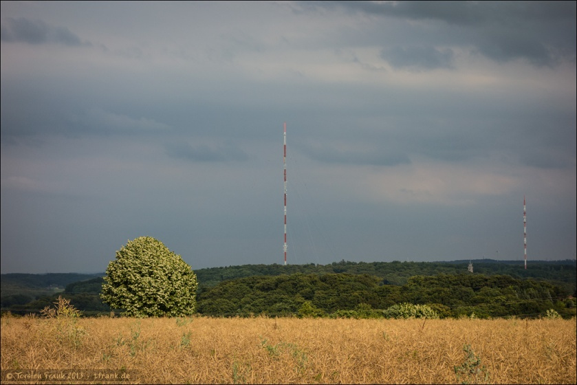Sender Langenberg