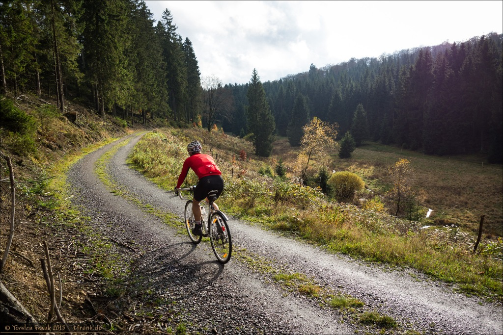 Auf dem Ederhöhenweg (der hier gleichzeitig auch der Rothaarsteig ist) am Oberlauf der Eder.