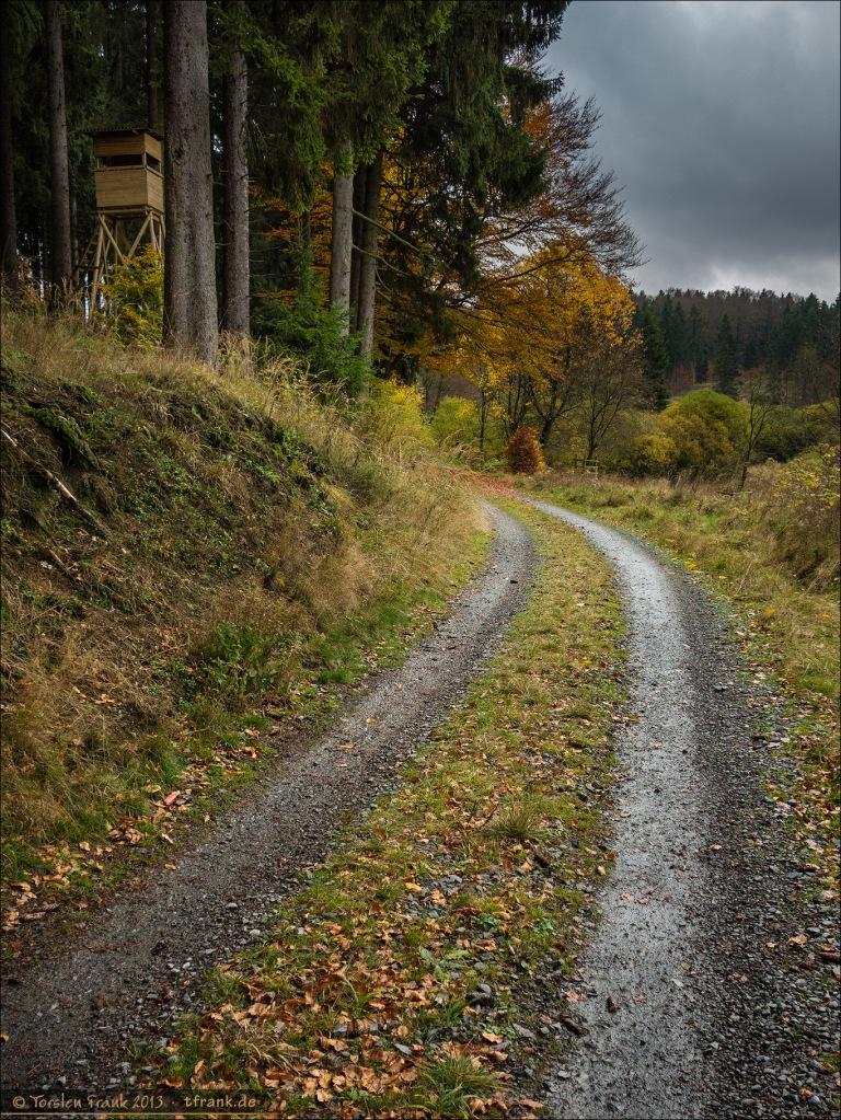 Der Ederhöhenweg, herbstlich feucht und dunkel. Auf Flickr habe ich auch eine Schwarz-Weiß-Version davon (http://www.flickr.com/photos/torsten_frank/10510552196/)