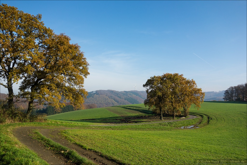 In der Elfringhauser Schweiz.