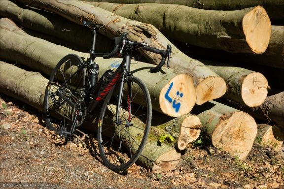 Waldwege kann das Canyon auch. :)