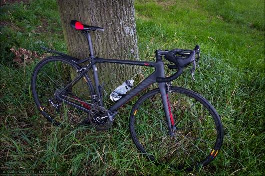 Canyon Ultimate CF SLX mit Tune Komm-Vor Carbon Sattel zweifarbig rot/schwarz