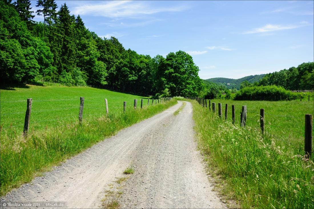 Ein Feldweg im Edertal zwischen Frankenberg und dem Edersee. Hier gleichzeitig ein Stück des Ederradweges.