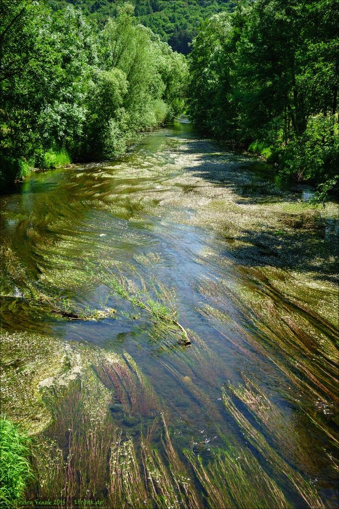 Ufervegetation und Makrophyten in der Orke, kurz vor der Einmündung in die Eder.