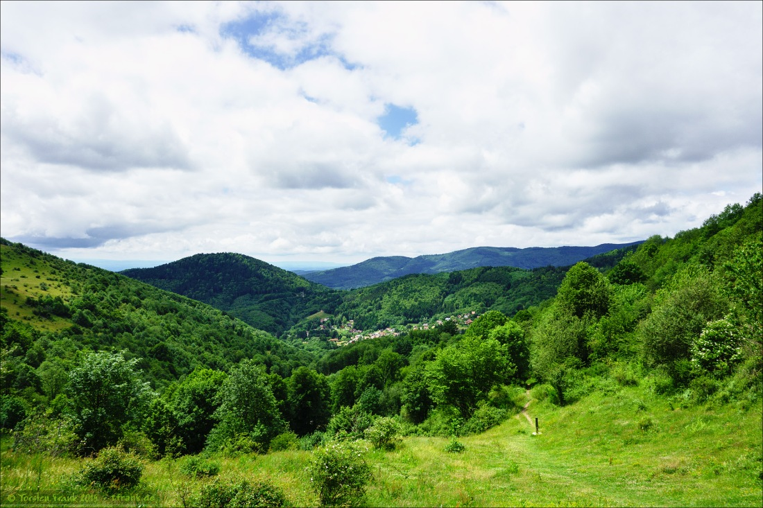 Grüne Hügel vom Col du Hundsruck.