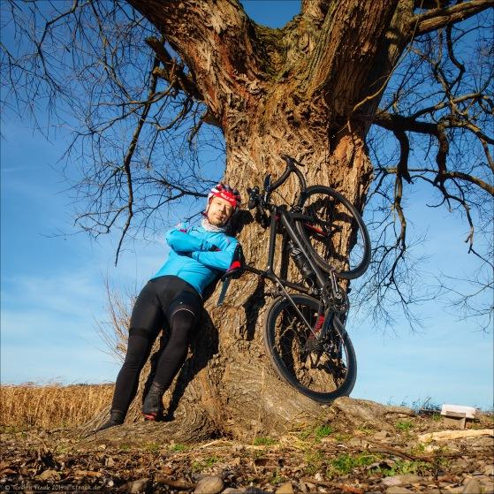 Am Baum im Edersee. Da kann man sich anlehnen. Ob Fahrer oder Fahrrad. :)