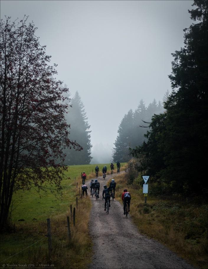Am Samstag morgen - Klettern in die Wolken.