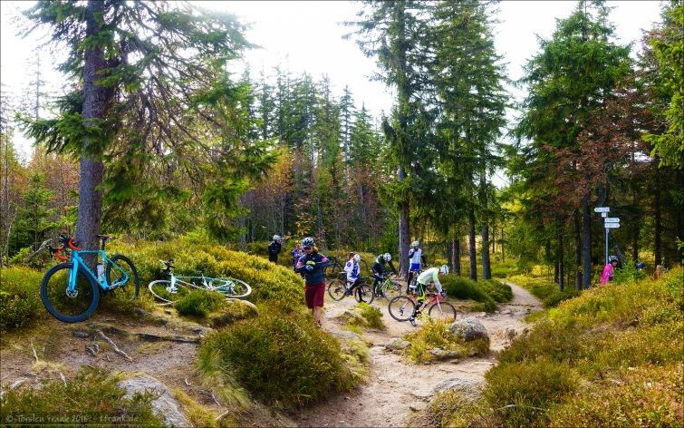 Schicke Trails am Aussichtspunkt
