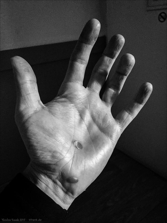 11326_0149-Hand_2048
