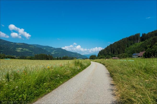 Schöner, ruhiger Murradweg in Österreich